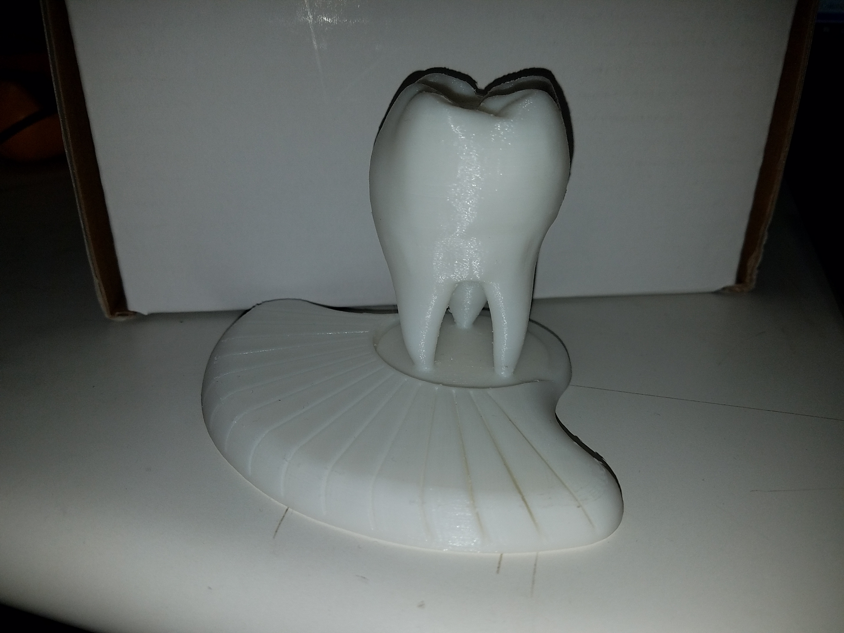 tooth2.jpg